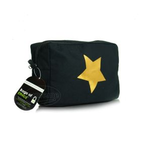 canvas star gold foil pouch - canmkb13